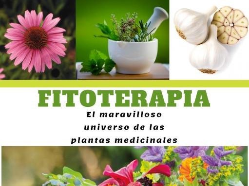 Fitoterapeuta benalmadena